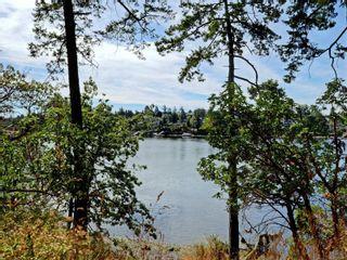 Photo 43: 936 Forshaw Rd in : Es Kinsmen Park House for sale (Esquimalt)  : MLS®# 873297