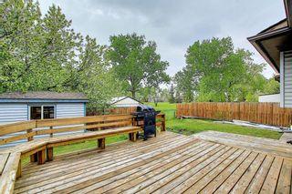 Photo 42: 23 Castlefall Way NE in Calgary: Castleridge Detached for sale : MLS®# A1141276