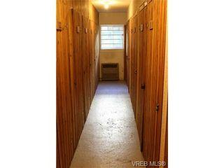 Photo 9: 203 429 Linden Ave in VICTORIA: Vi Fairfield West Condo for sale (Victoria)  : MLS®# 727710