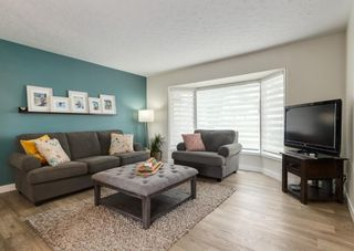 Photo 3: 5812 21 Street SW in Calgary: North Glenmore Park Detached for sale : MLS®# A1128102