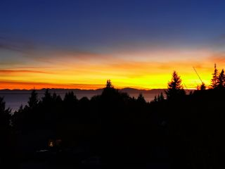 Photo 38: 486 OCEAN VIEW Drive in Gibsons: Gibsons & Area House for sale (Sunshine Coast)  : MLS®# R2526520