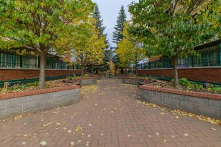 Photo 2: 103 37 SIR WINSTON CHURCHILL Avenue: St. Albert Condo for sale : MLS®# E4224552