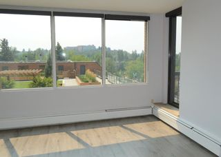 Photo 6: 508 330 26 Avenue SW in Calgary: Mission Apartment for sale : MLS®# A1100545