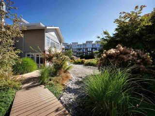 """Photo 19: 109 4233 BAYVIEW Street in Richmond: Steveston South Condo for sale in """"The Village"""" : MLS®# R2261312"""