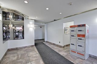 Photo 23: 411 333 Garry Crescent NE in Calgary: Greenview Apartment for sale : MLS®# A1088693