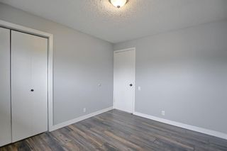 Photo 16: 155 Templevale Road NE in Calgary: Temple Detached for sale : MLS®# A1119165