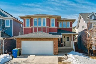 Main Photo: 201 SILVERADO BANK Circle SW in Calgary: Silverado Detached for sale : MLS®# A1080570