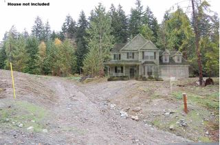 Photo 1: 9850 LINDSAY Terrace in Mission: Mission BC Land for sale : MLS®# R2331849