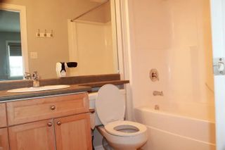 Photo 8: 17823 90 Street in Edmonton: Zone 28 House for sale : MLS®# E4237270