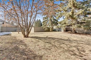 Photo 29: 1425 43 Street SW in Calgary: Rosscarrock Detached for sale : MLS®# A1090704
