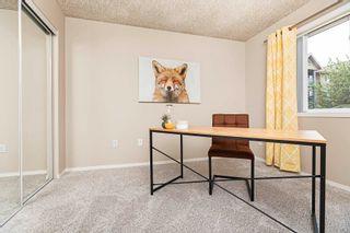 Photo 34: 215 279 SUDER GREENS Drive in Edmonton: Zone 58 Condo for sale : MLS®# E4261429