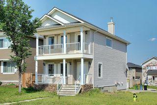 Photo 48: 311 TARALAKE Terrace NE in Calgary: Taradale Detached for sale : MLS®# A1128054