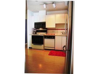 """Photo 9: 405 98 10TH Street in New Westminster: Downtown NW Condo for sale in """"PLAZA POINTE"""" : MLS®# V1002763"""