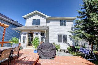 Photo 40: 690 Coventry Drive NE in Calgary: Coventry Hills Detached for sale : MLS®# A1144228