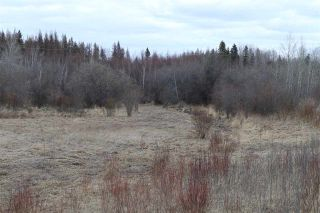 Photo 30: Twp 510 RR 33: Rural Leduc County Rural Land/Vacant Lot for sale : MLS®# E4239253