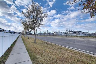 Photo 32: 141 SADDLEMEAD Road in Calgary: Saddle Ridge Detached for sale : MLS®# A1052360