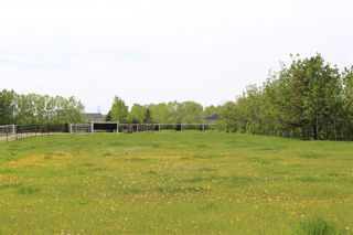 Photo 46: 255122 RANGE ROAD 283 in Rural Rocky View County: Rural Rocky View MD Detached for sale : MLS®# C4299802
