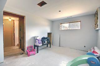 Photo 33:  in Edmonton: Zone 35 House for sale : MLS®# E4254409