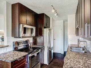 Photo 11: 412A 4455 Greenview Drive NE in Calgary: Greenview Apartment for sale : MLS®# A1101294