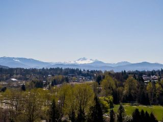 Photo 38: 33328 WREN Crescent in Abbotsford: Central Abbotsford House for sale : MLS®# R2567547