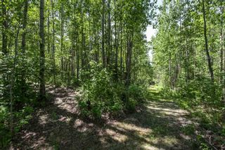 Photo 38: 26 460002 Hwy 771: Rural Wetaskiwin County House for sale : MLS®# E4237795