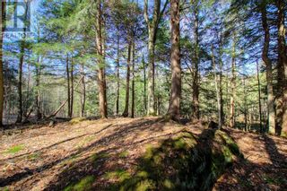 Photo 32: LOT#70 PINE Crescent in Huntsville: Vacant Land for sale : MLS®# 40109977