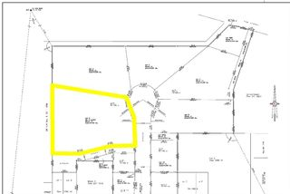 Photo 6: 4510 51 Avenue: Olds Land for sale : MLS®# A1048566