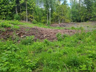 Photo 13: 1395 Taylor Road, in Sorrento: Vacant Land for sale : MLS®# 10229703