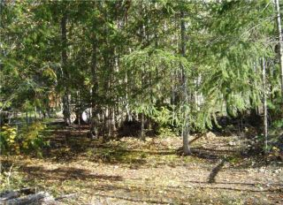 Photo 14: 6037 Eagle Bay Road in Eagle Bay: Million Dollar Alley Vacant Land for sale : MLS®# 10205016