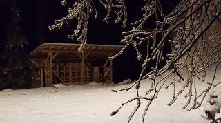 Photo 38: 3619 ELDRIDGE Road in Abbotsford: Sumas Mountain House for sale : MLS®# R2558682