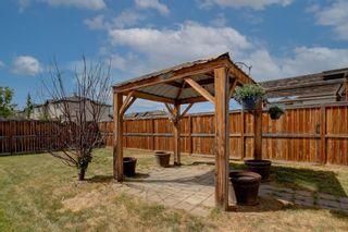 Photo 36: 27 Saddlebrook Place NE in Calgary: Saddle Ridge Semi Detached for sale : MLS®# A1122360