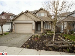 Photo 25: 7157 196A Street in Langley: Willoughby Heights House for sale : MLS®# F1108097