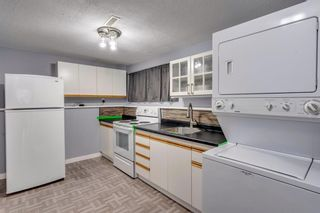 Photo 23: 644 RADCLIFFE Road SE in Calgary: Albert Park/Radisson Heights Detached for sale : MLS®# A1025632