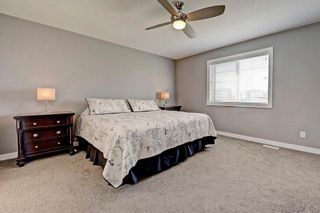 Photo 29: 247 CANALS Close SW: Airdrie House for sale : MLS®# C4135692