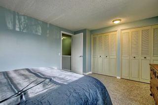 Photo 21: 7 PINEBROOK Place NE in Calgary: Pineridge Detached for sale : MLS®# C4221689