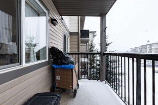 Photo 28: 304 1188 HYNDMAN Road in Edmonton: Zone 35 Condo for sale : MLS®# E4248234