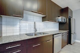 Photo 14: 406 501 57 Avenue SW in Calgary: Windsor Park Apartment for sale : MLS®# A1142596