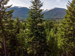 Photo 9: 4901 HORSTMAN Place in Whistler: Benchlands Land for sale : MLS®# R2612602