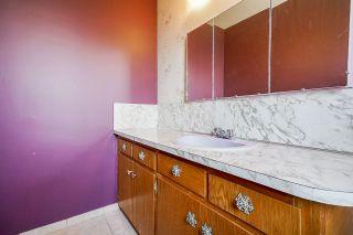 Photo 19: 21184 DEWDNEY TRUNK Road in Maple Ridge: Southwest Maple Ridge House for sale : MLS®# R2541732