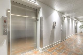 Photo 38: 301 1229 Cameron Avenue SW in Calgary: Lower Mount Royal Apartment for sale : MLS®# A1095141