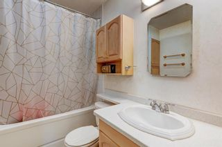 Photo 14: 724 35A Street NW in Calgary: Parkdale Detached for sale : MLS®# A1100563