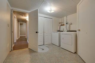 Photo 26: 204 GEORGIAN Way: Sherwood Park House for sale : MLS®# E4257975