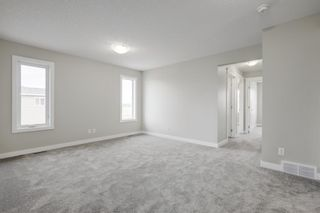 Photo 16: 57 RED SKY Terrace NE in Calgary: Redstone Detached for sale : MLS®# A1060906