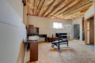 Photo 41: 57 Southbridge Crescent: Calmar House for sale : MLS®# E4254378