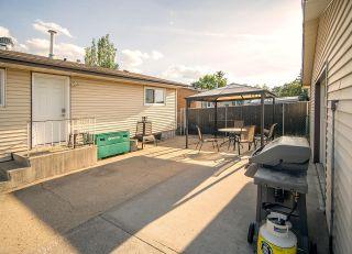 Photo 21: 10310 167A Avenue in Edmonton: Zone 27 House for sale : MLS®# E4251921