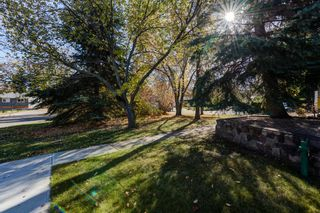 Photo 41: 17 STANLEY Drive: St. Albert House for sale : MLS®# E4266224