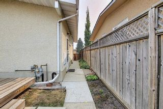 Photo 41: 3708 108 Street in Edmonton: Zone 16 House for sale : MLS®# E4255030