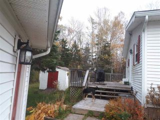 Photo 31: 4651 366 Highway in Tidnish Cross Roads: 102N-North Of Hwy 104 Residential for sale (Northern Region)  : MLS®# 201925091