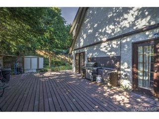 Photo 16: 803 Cecil Blogg Dr in VICTORIA: Co Triangle House for sale (Colwood)  : MLS®# 711979