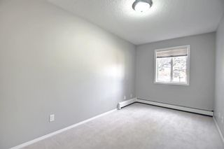 Photo 26: 1113 11 Chaparral Ridge Drive SE in Calgary: Chaparral Apartment for sale : MLS®# A1145437